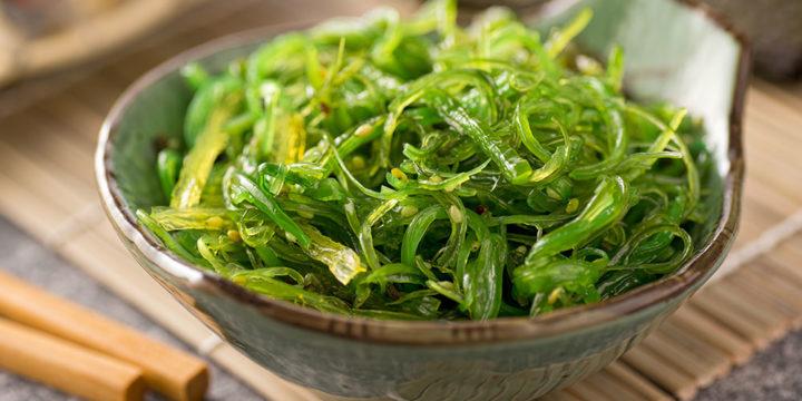 Le pouvoir secret des algues